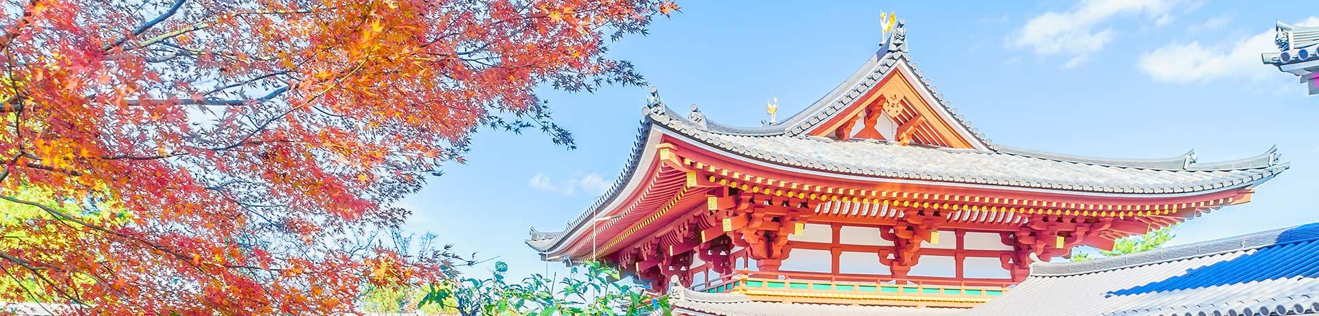 일본 일주 7일